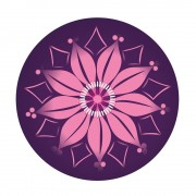 Nikidom Roller Wheel Stickers Bloom matrica szett